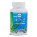 Kongka Herb Capsules Luk Tai Bai, PHYLLANTHUS AMARUS, liver treatment, 100 pcs