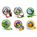 Lip balm Noni, Mangosteen, Aloe, Passion Fruit, Mango, Coconut, 6 pcs