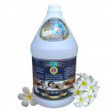 Mook Herbs Massage Oil Lemongrass 3 L